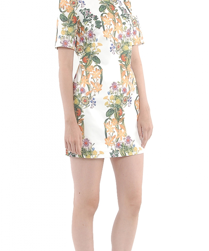 Secret Garden Shift Dress